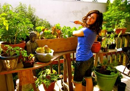 My Seattle Garden