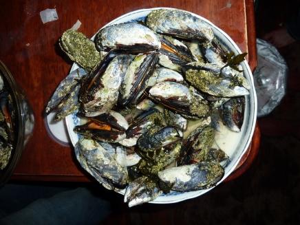 successful mussel mission