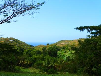 Ridge to Reef farm