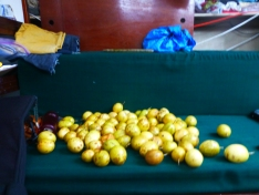 passion fruits. I brought these to my sister in StJ